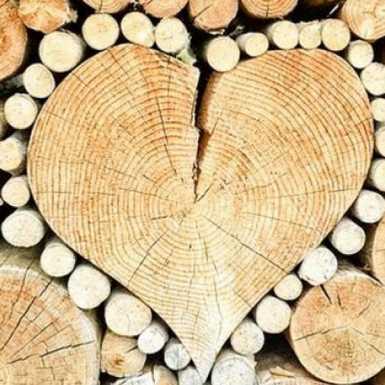 Za preradu drva i proizvodnju namještaja osigurano 79,5 milijuna kuna bespovratnih sredstava