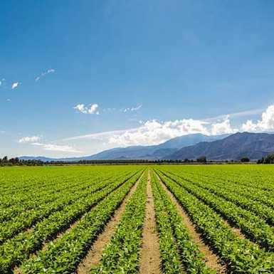 Privremena raspodjela sredstava mladim poljoprivrednicima
