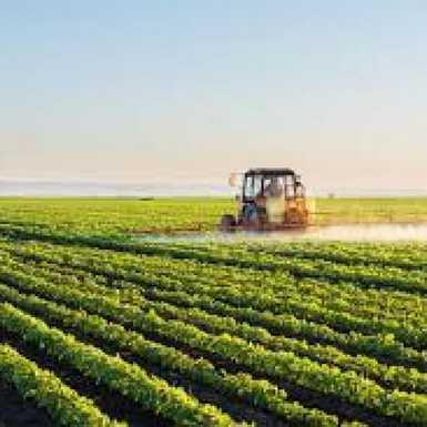 Hrvatska poljoprivreda nakon 2020. – poljoprivrednici uključite se u izradu strategije