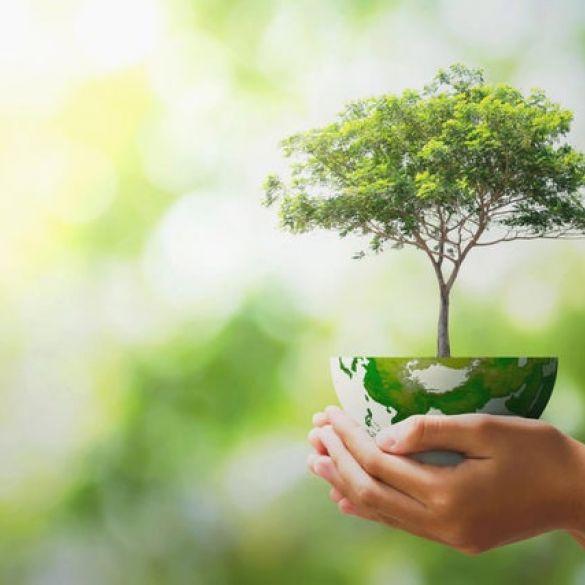 Dan planeta Zemlja: Kako pravilno postupati s otpadom?