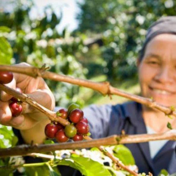 15. listopada – Međunarodni dan ruralnih žena