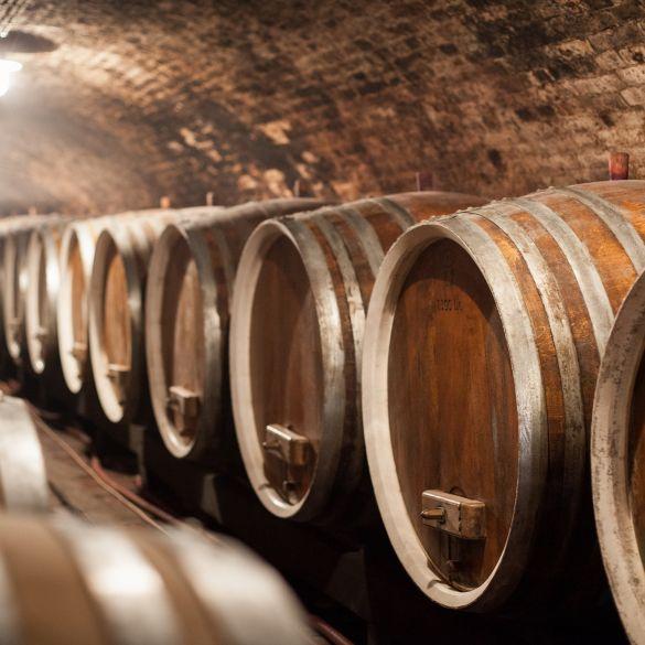 Otvorena online vinoteka Iločkih podruma