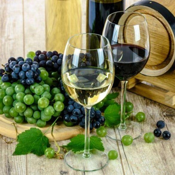 Kako brendirati Brodsko Posavlje kao vinsku destinaciju?