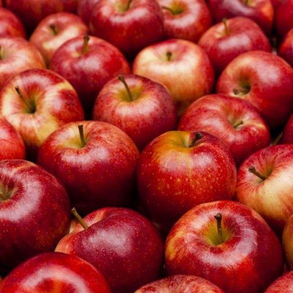 Isplaćeno gotovo 20 milijuna kuna proizvođačima jabuka